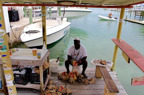 George, aka Showbo makes fresh Conch Salad next to Harbour View Marina